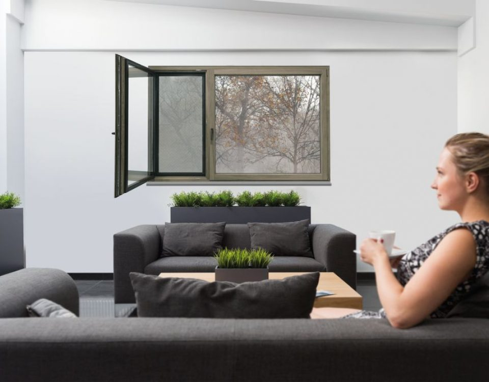 Jak chronić się przed smogiem w domu?